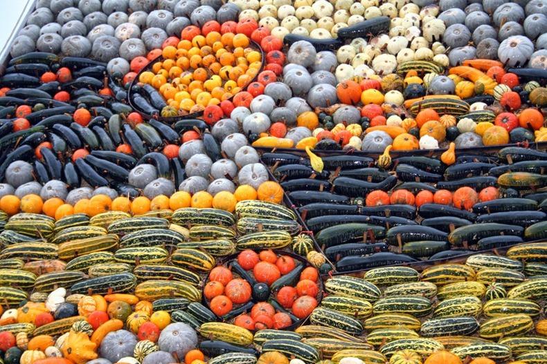 slindon-pumpkin-festival-6