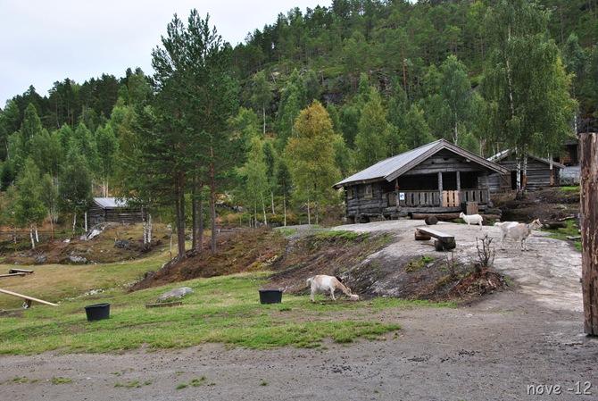 Bjørneparken 117