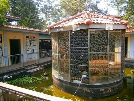 Museo de las minas, Siem Reap