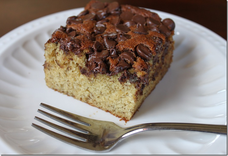 Banna Chocolate Chip Snack Cake 031