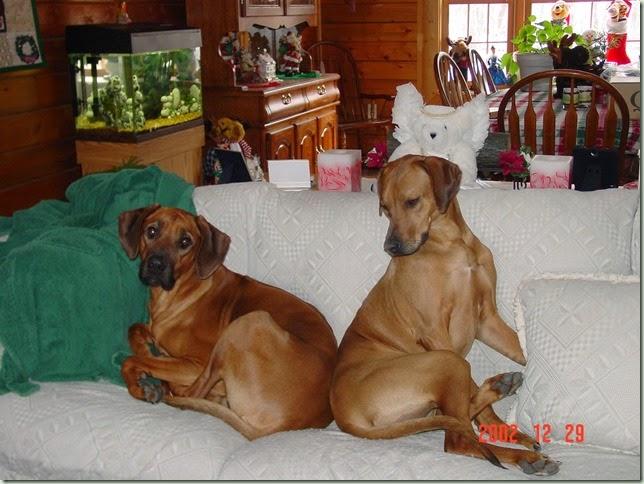 Dakota & Zoe Dec 2002 (14)