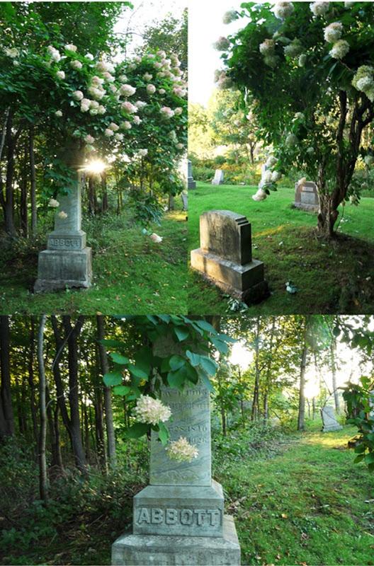 cemetery-LR