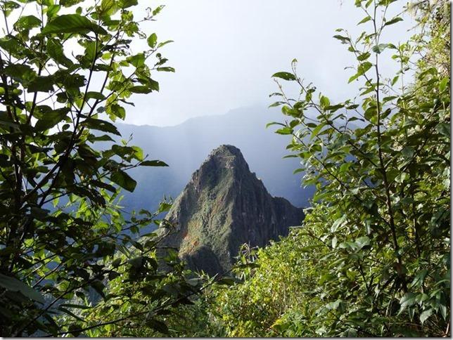 Machu_Picchu_DSC02289