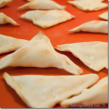 Cheese and garlic wontons5