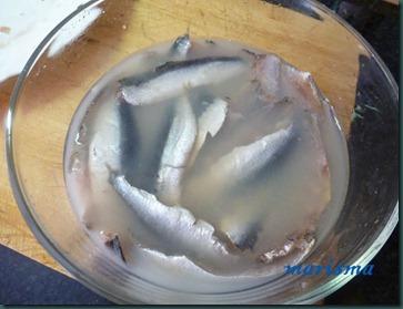 sardinas en vinagre5 copia