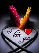 love-you_poze telefon mobil