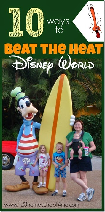 10 ways to beat the heat at Disney World - Great tips for disney vacations! We were SO hot last time we visited and these tips really helped!