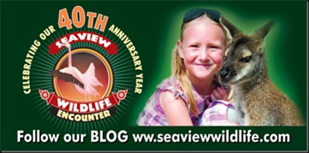 Seaview W E