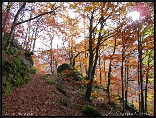 Lantz otoño 048