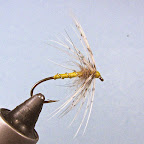 5. Inna, trochę wzbogacona wersja P&Y - tułów przewinięty złotym drucikiem, pod jeżynką thorax z dubbingu, na przykład z sierści zająca.