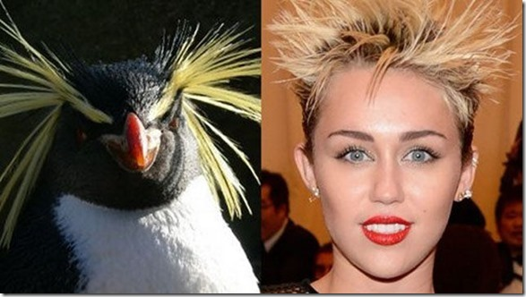 accurate-look-alikes-15