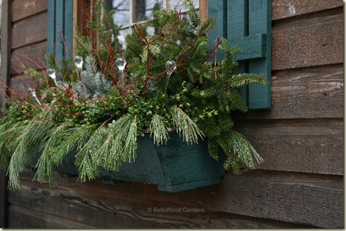 holiday window box - 65 avenue
