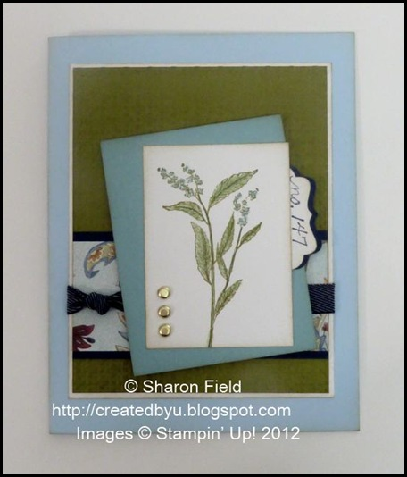 UDI79_Sharon_FIeld_natures_walk_5_)minute_Card