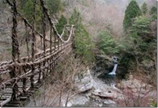 ponte 13