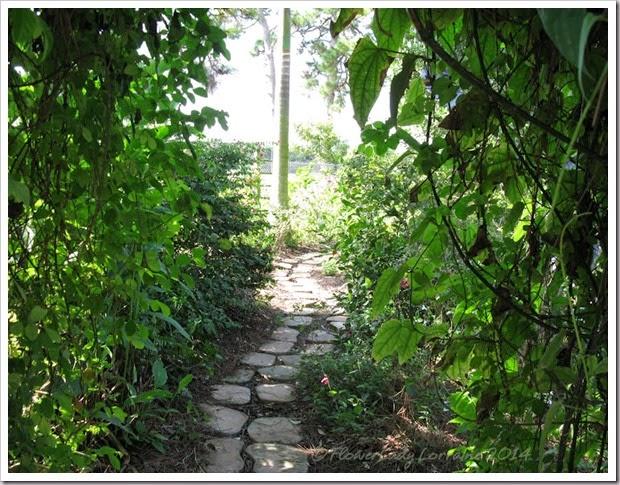11-20-cot-garden-path