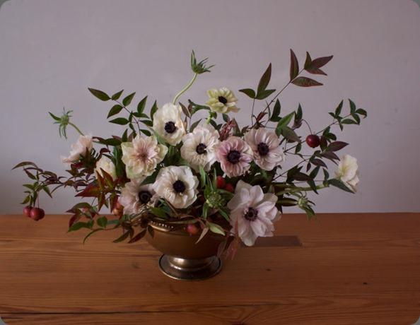 ADF.Anemones ariel dearie