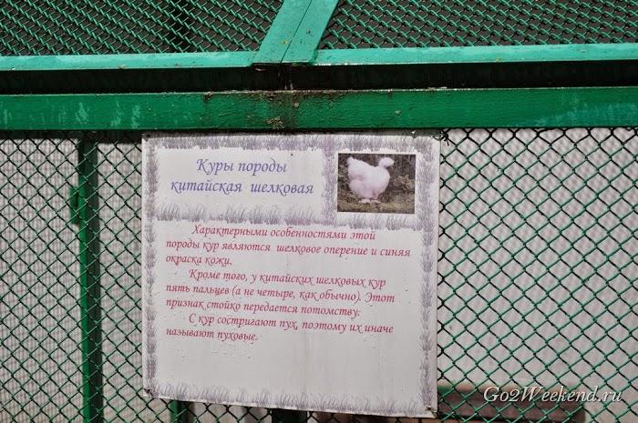 Minsk_Stankovo_16.jpg