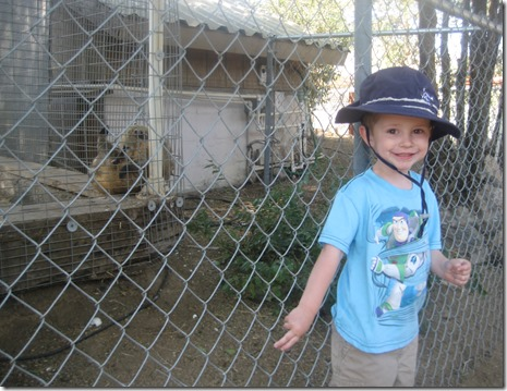 08 04 13 - Sierra Safari Zoo (1)
