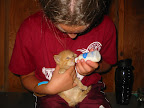 Caring for a companion animal is the first parenting experience for most children.