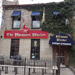 the pleasant plucker in hamilton in Hamilton, Ontario, Canada