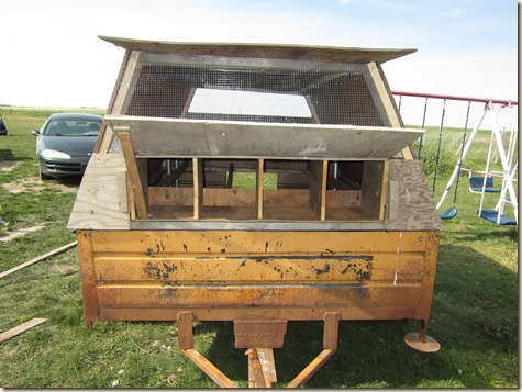 Chicken tractor and tung oil staining 042