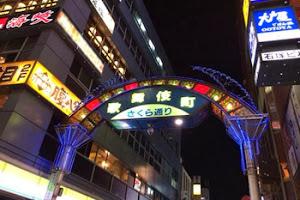 """蔡成平:日本""""扫黄""""与中国有什么不同?"""
