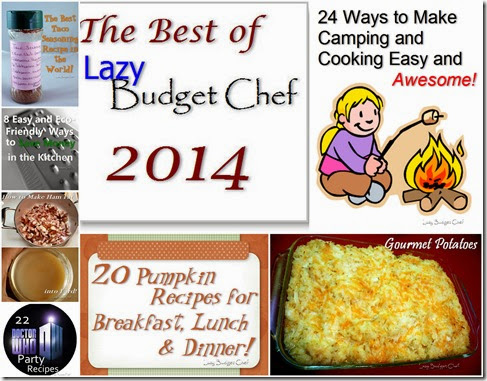 best of Lazy Budget Chef 2014