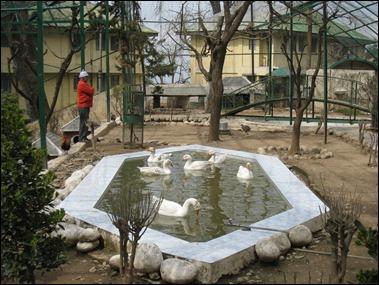 Himalayan Bird Sanctuary