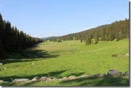 Les marais de la combe d'Ambrunex : la dernière population suisse du saxifrage à oeil de bouc (Saxifraga hirculus), relicte boréo-articque,  y est protégée. En France, la seule population viable se trouve dans les marais de Bannans (25).