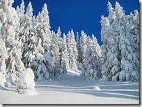 paisajes nevados (66)
