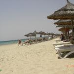 Tunis (20).jpg