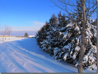 First Snow 139