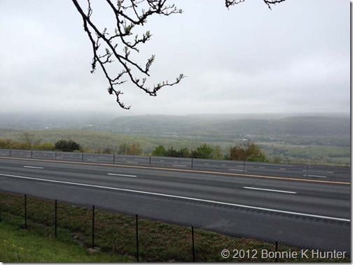 NewYork2012 010