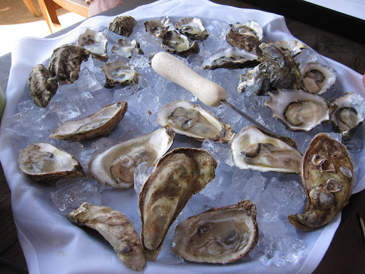 A variety of oysters from all over the country.