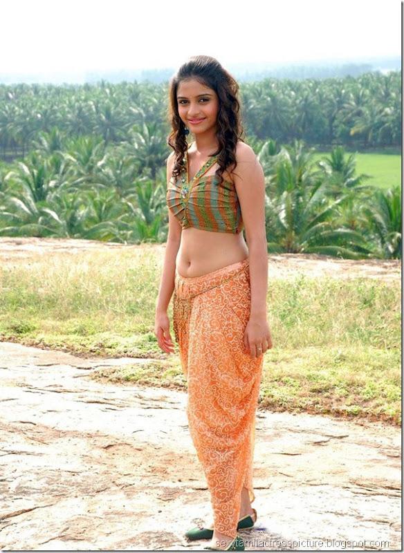 south-indian-actress-Sheena-Shahabadi-hot-navel-stills