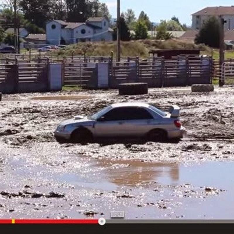 Subaru Impreza σε  μεγάλες μάχες