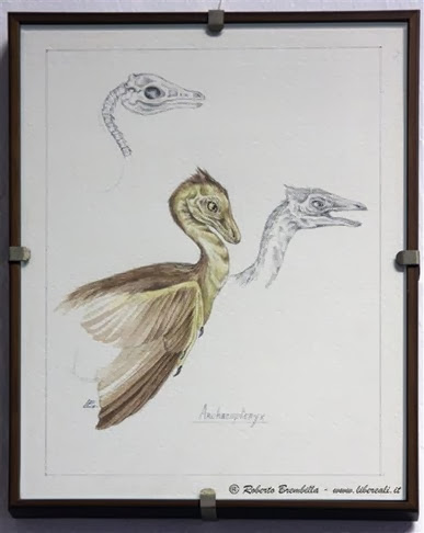 02_2013-10-10_Archaeopteryx_Milano (2)-c (Medium)