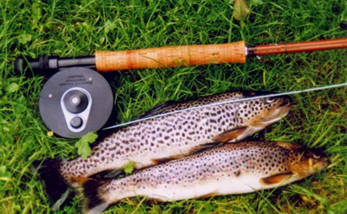 Fishing-Brown-Trout