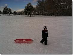 liam sled