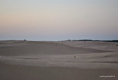 OHV Area of the dunes