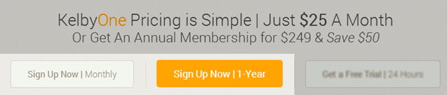 Click either Sign Up Now option