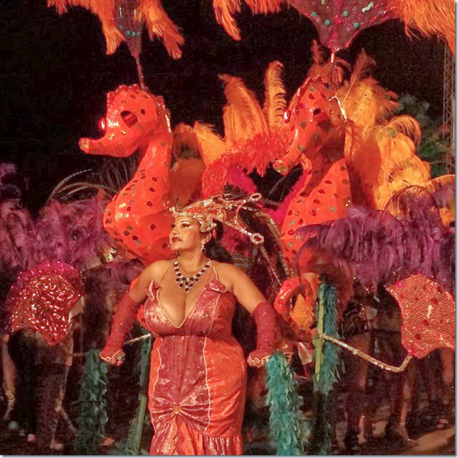 Salta_Carnaval_2014_DSC03411