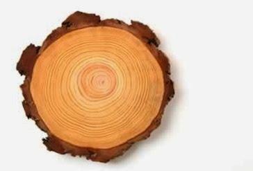wood350_5182b67755242