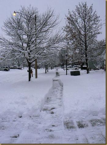 Snowy street in Dec 13