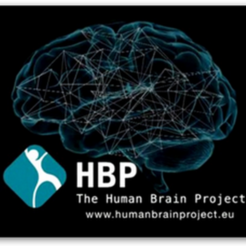 "European Brain Project Turning Into A ""Brain Wreck"", An Expensive Database Management Program, Just  Hunting New Computing Architectures As Neuroscience and Technology Not Working Well Together"