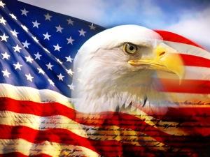 Eagle Stars & Stripes.jpeg