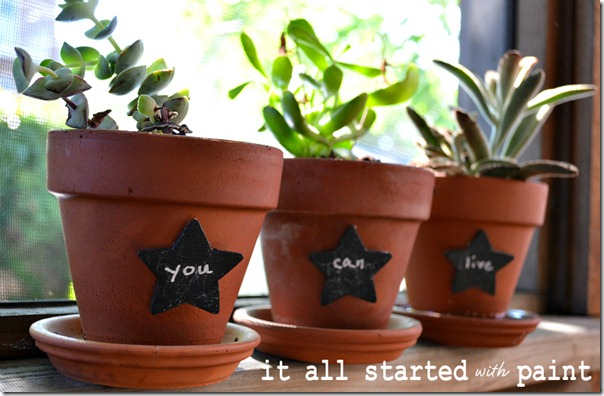 chalkboard_paint_on_star_plant_markers