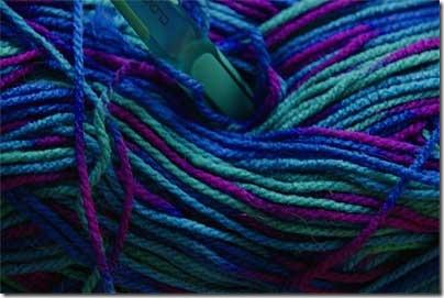 Robin Double Knit Print