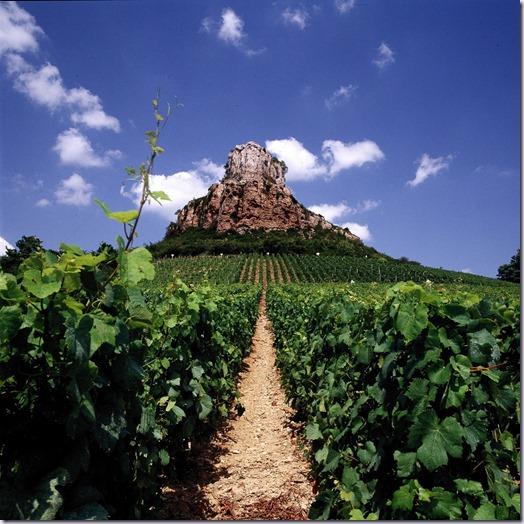bourgogne-borgonha-vinho-e-delicias