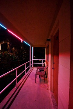 Neons-of-Florida---Sea-Jay-Motel-8